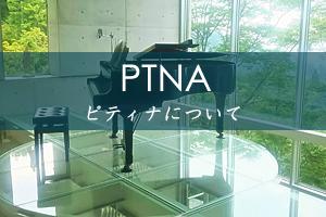 ピティナについて